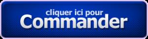 REDACTEUR WEB SEO