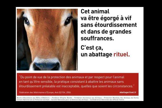 HALAL - Marine Le Pen dénonce le scandale sur la souffrance animale dans les abattoirs en France !