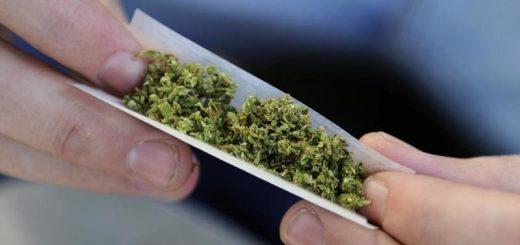 Pétition Légalisation Cannabis