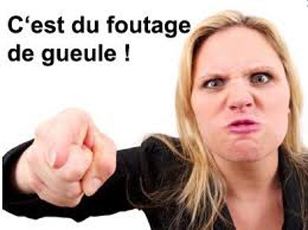 FOUTAGE DE GUEULE : L'aide au logement des députés va passer de 900€ à 1 200€ par mois et ceci, pour faire... des économies !