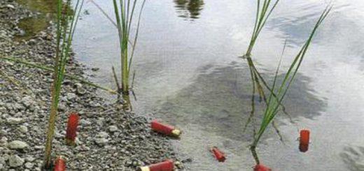 (VIDÉO) - POLLUTION : La nature est polluée par le plomb et le plastique provenant des 200 millions de cartouches par an utilisés par les chasseurs !