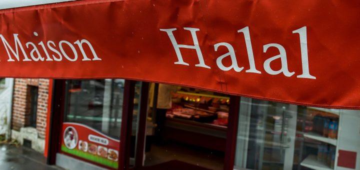 (VIDÉO CHOC) – Abattage Rituel : Voici ce qu'est vraiment le Halal !