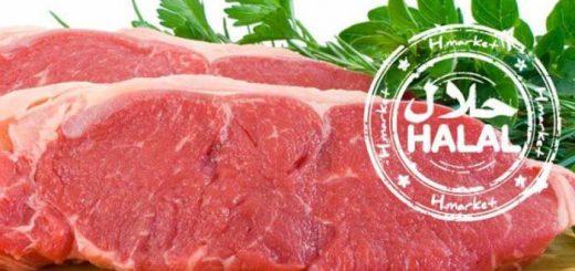 (VIDÉO) – Il y a un danger pour la santé de manger de la viande halal et voici pourquoi !