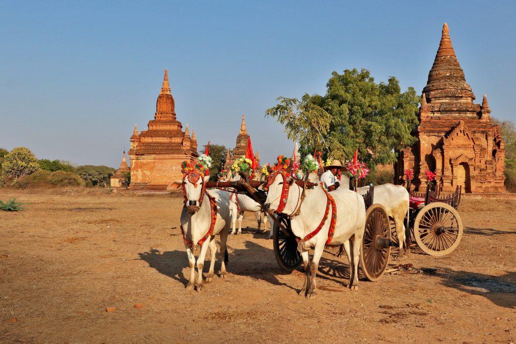 Voyage en famille en Birmanie : Redonner le sourire à ses enfants