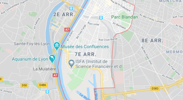 Lyon : Un migrant, délinquant notoire, une nouvelle fois interpellé !