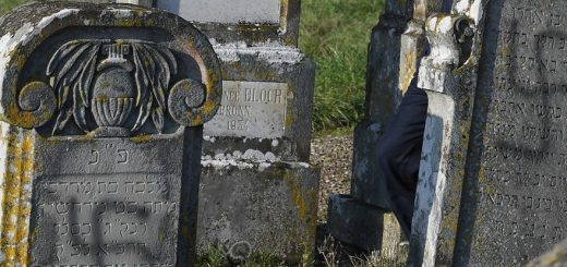 Des tombes taguées de croix gammées et d'inscriptions racistes anti-français à Gruissan !
